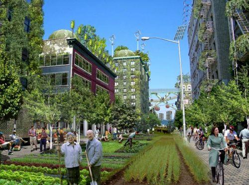 Нью-Йорк превратят в одну большую ферму!?