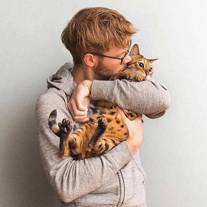 6-signs-that-your-cat-loves-you