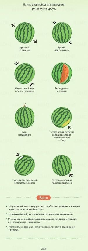 Как выбрать хороший арбуз