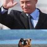 Планы Путина значительно масштабнее, чем «завоевание» Украины