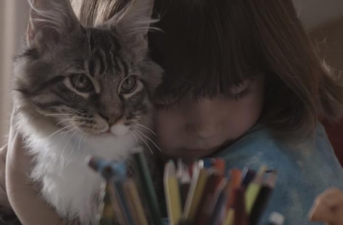 Реклама Whiskas: трогательная дружба девочки и ее кошки (статья + видео)