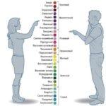 Как женщины и мужчины называют цветовые оттенки (инфографика)