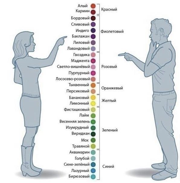 Большая разница или Как женщины и мужчины называют цветовые оттенки (инфографика)
