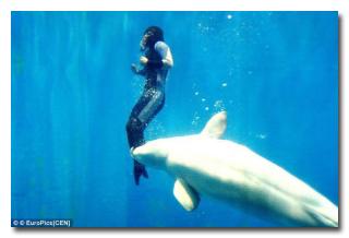 5 историй о животных, которые спасли людей  от неминуемой смерти (статья + 10 фото)
