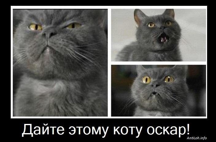"Демотиваторы ""на злобу дня"""