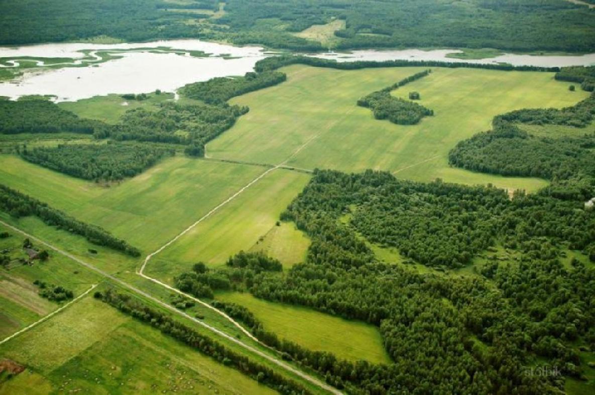 На 10 миллионов гектаров увеличится площадь земель для дальневосточного гектара