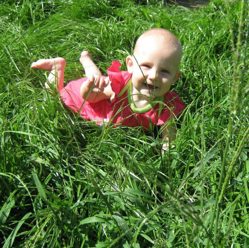 Красивый газон своими руками (статья + 11 фото)