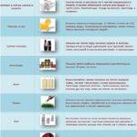 Чем можно вывести пятна (инфографика)