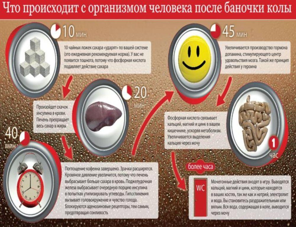 Вред кока-колы (инфографика)