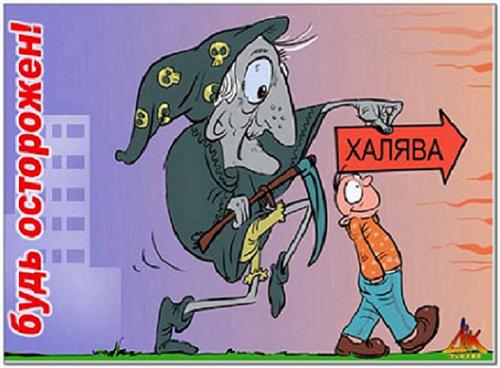 kuda_vediet_xaliava