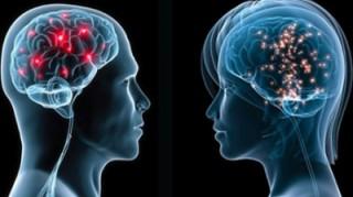 Ученые выяснили что при появлении женщины мужской мозг отключается