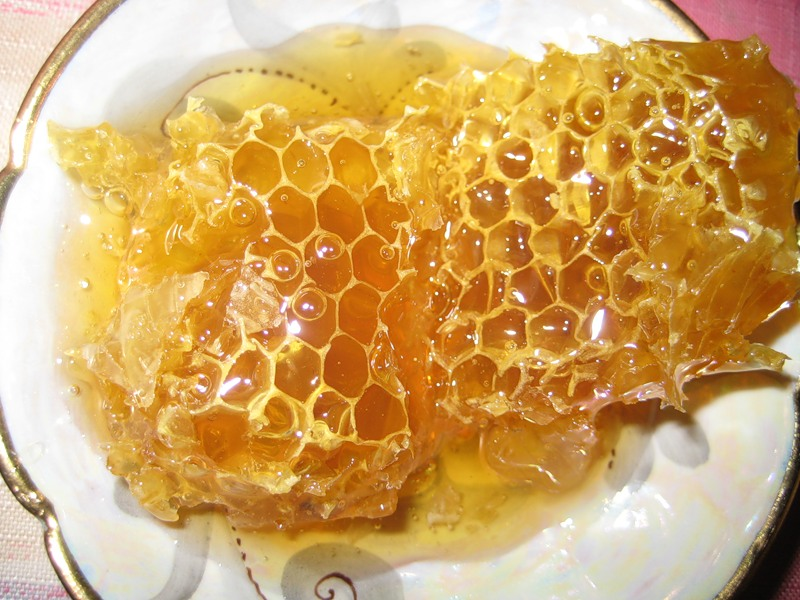 Польза меда в сотах