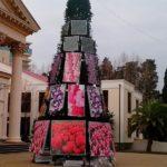 WTF: Олимпийская ёлка в центре Сочи (3 фото)