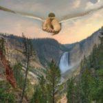 Почему Бог не дал человеку крыльев (притча)