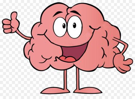 Чем порадовать свой мозг