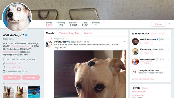 Как заработать миллион в твиттере с помощью собак