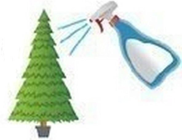 Как дольше сохранить живую новогоднюю ёлку