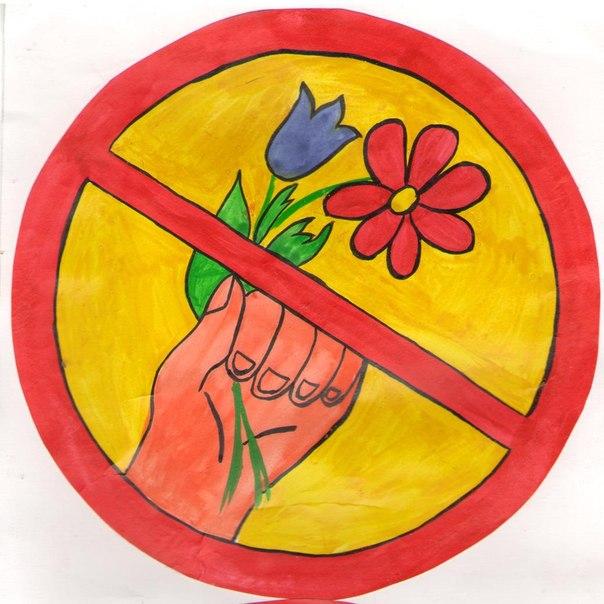 Сорванные цветы дарить нельзя!?