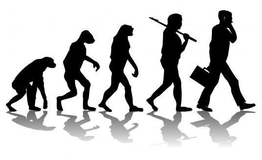 Палеонтологических крах теории эволюции Чарльза Дарвина (статья + видео)