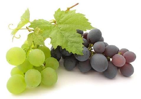 Польза и вред винограда