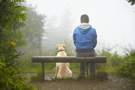 Дружба человека с собакой
