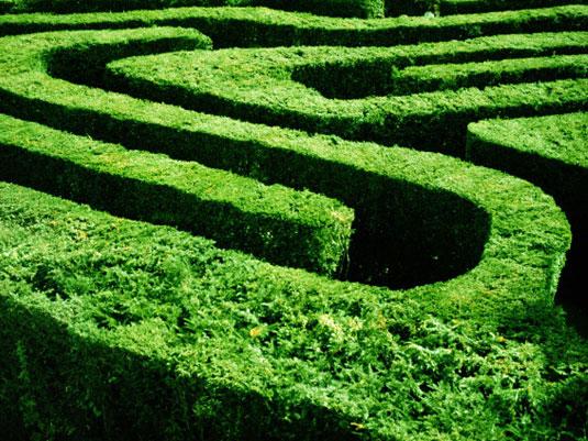 Щекотливые житейские ситуации и быстрые способы выхода из них (16 советов)