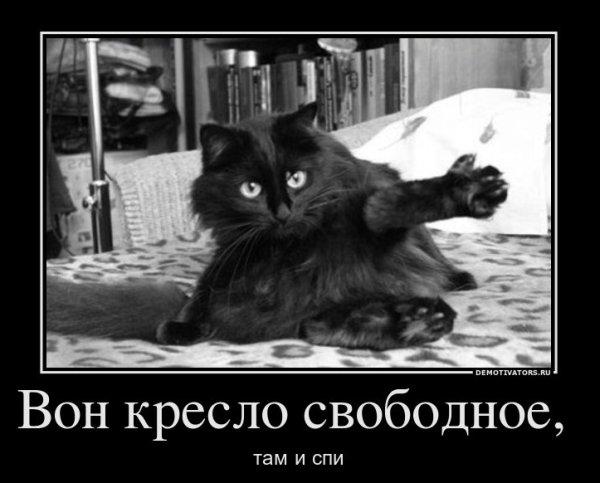 «Эти забавные животные» (демотиваторы)