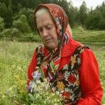 Монастырская травница: Не хотите болеть — накопайте себе три корня — лопуха, пырея и одуванчика (статья + видео)