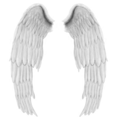 krilja angela